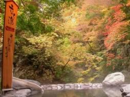 「関東東北じゃらん11月号」にてご紹介いただきました