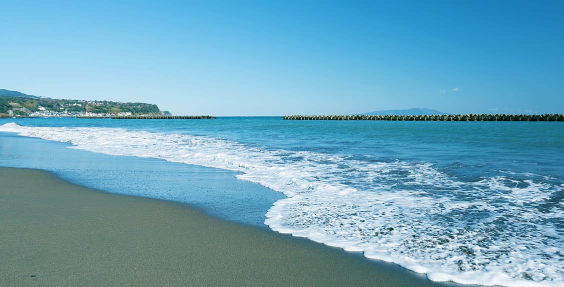 海と山の自然に囲まれた美しい町、河津町
